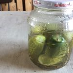 ピッコロ ディ パリジ(ミニキュウリ)を種から栽培→ピクルスにして美味しくいただくまでやってみた